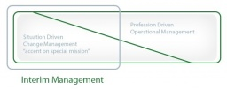 consultdustry interim management ratio in change management.jpg